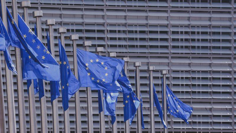 UE anunţă înăsprirea pedepselor pentru persoanele care angajează imigranţi ilegali