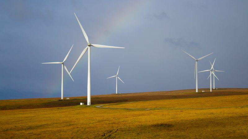 10 lucruri inedite despre energia eoliană